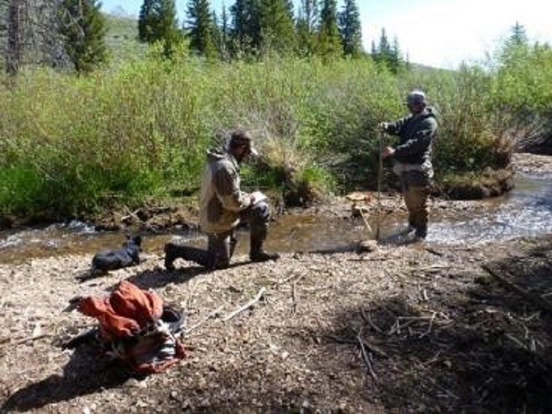 Photo of researchers taking measurements along stream
