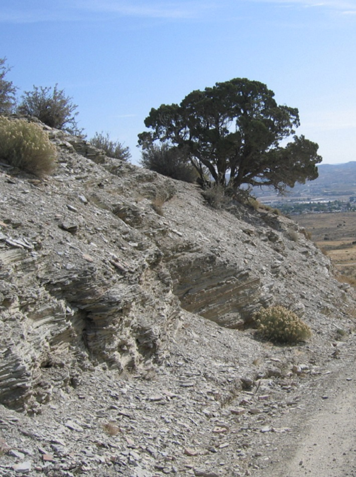 Photo of Tipton Shale Formation
